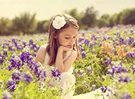 花丛中的小天使萌图推荐