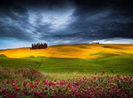 大自然清新绿色草原风景图片壁纸