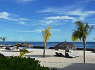 海滩椰林大海风景壁纸图片