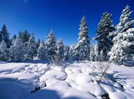 唯美冬天雪景高清电脑壁纸
