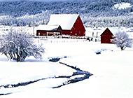 雪山林间白雪皑皑宁静唯美风景