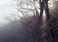 云雾缭绕唯美景色图片壁纸