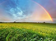 唯美大自然风景壁纸清新怡人