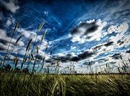 优美自然风景图片壁纸集锦