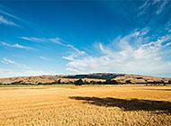 欧洲乡村小镇麦地平原风景壁纸