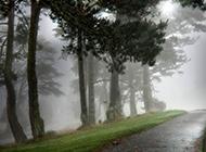 深山清晨云雾风景图片壁纸