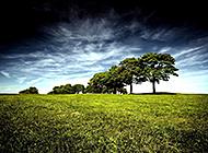 绿意盎然的平原分光美景图片