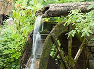 林间小溪唯美景色图片