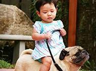 最新恶搞儿童和动物玩耍图片