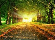 大自然四季美丽风景图片高清壁纸
