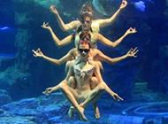 水底的千手观音