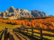 欧洲田园优美风光壁纸