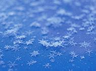 玲珑剔透的雪花与冰霜组图