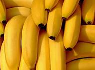 美味可口水果之王香蕉唯美拍摄图片