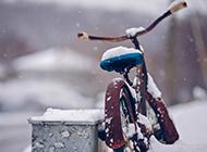 北方冬天雪景图片唯美清新