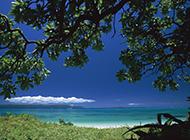 清凉夏日蔚蓝海景唯美旅游风景图片