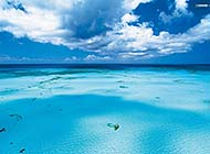 广阔无垠的海边风景图片