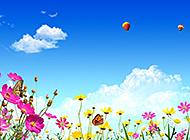 色彩斑斓的夏天美丽风景图片