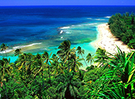 美仑美奂的夏威夷海滩图片