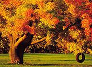 九月风光高清风景壁纸