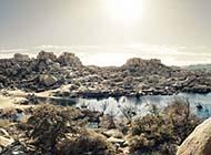 苍茫荒芜的沙漠风光高清图片赏析