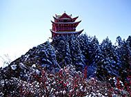 四川峨眉山冬季雪景高清壁纸