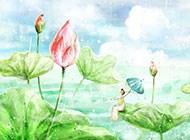 秀美的乡村田园风光壁纸