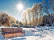 冬日森林唯美纯白雪景精致美图壁纸