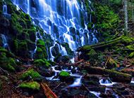 美丽的美国森林瀑布风景区美图