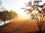 清晨唯美夕阳高清摄影