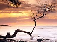 海边黄昏自然风光高清电脑壁纸