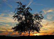 落日美丽风景图片大全欣赏