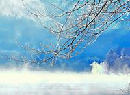 唯美清新素雅雪景风景图片壁纸