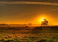 德国自然界景色秀丽图片欣赏