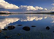 青松山水自然风光美景图片