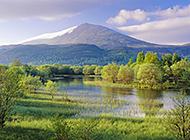 大自然的杰作:山水树木风光美景