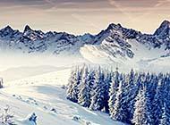 冬天唯美雪景高清雪景壁纸