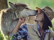 科学家夫妇与狼同居6年 亲如一家似手足