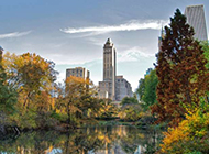 纽约公园风景图片高清壁纸