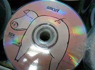 节操掉了的CD你敢拿吗