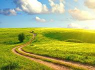 绿色草原风景壁纸优美壮丽
