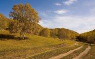 秋日里茫茫无际的草原高清图集