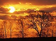 日落晚分火红般的天空美景图片
