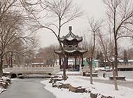天津北宁公园唯美雪景高清图片