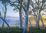 澳大利亚的美景高清壁纸