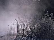 初晨云雾缭绕自然风景