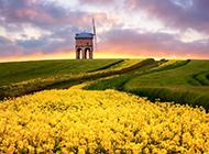 草原上的美丽大自然风景图片壁纸