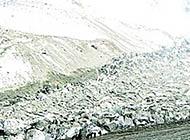 新疆冰川移动致1.5万亩草场消失