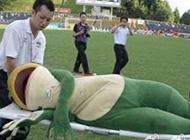 经典搞笑图片之这只青蛙热得晕了过去