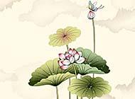 中国美丽花卉水墨画图片壁纸